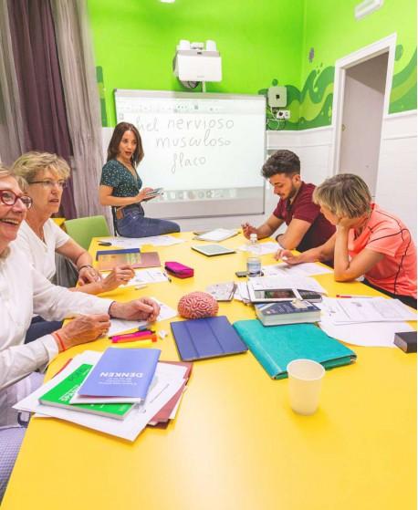 CURSO INTENSIVO Y CLASES PRIVADAS (30 lecciones / semana)